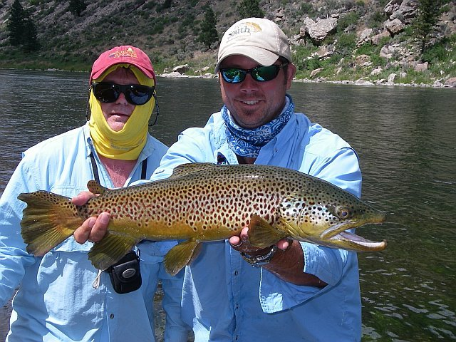 Al caucci fly fishing for Trout fishing in alabama
